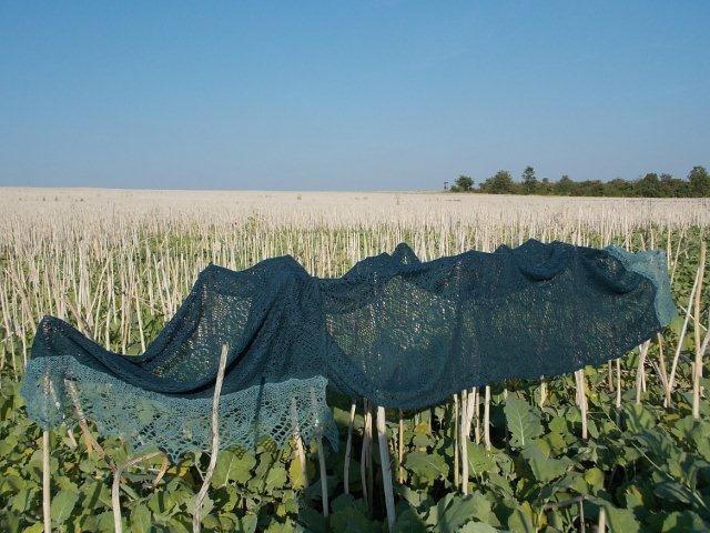TE KOOP.: grote Petrol stoffen sjaal met aangebreide rand