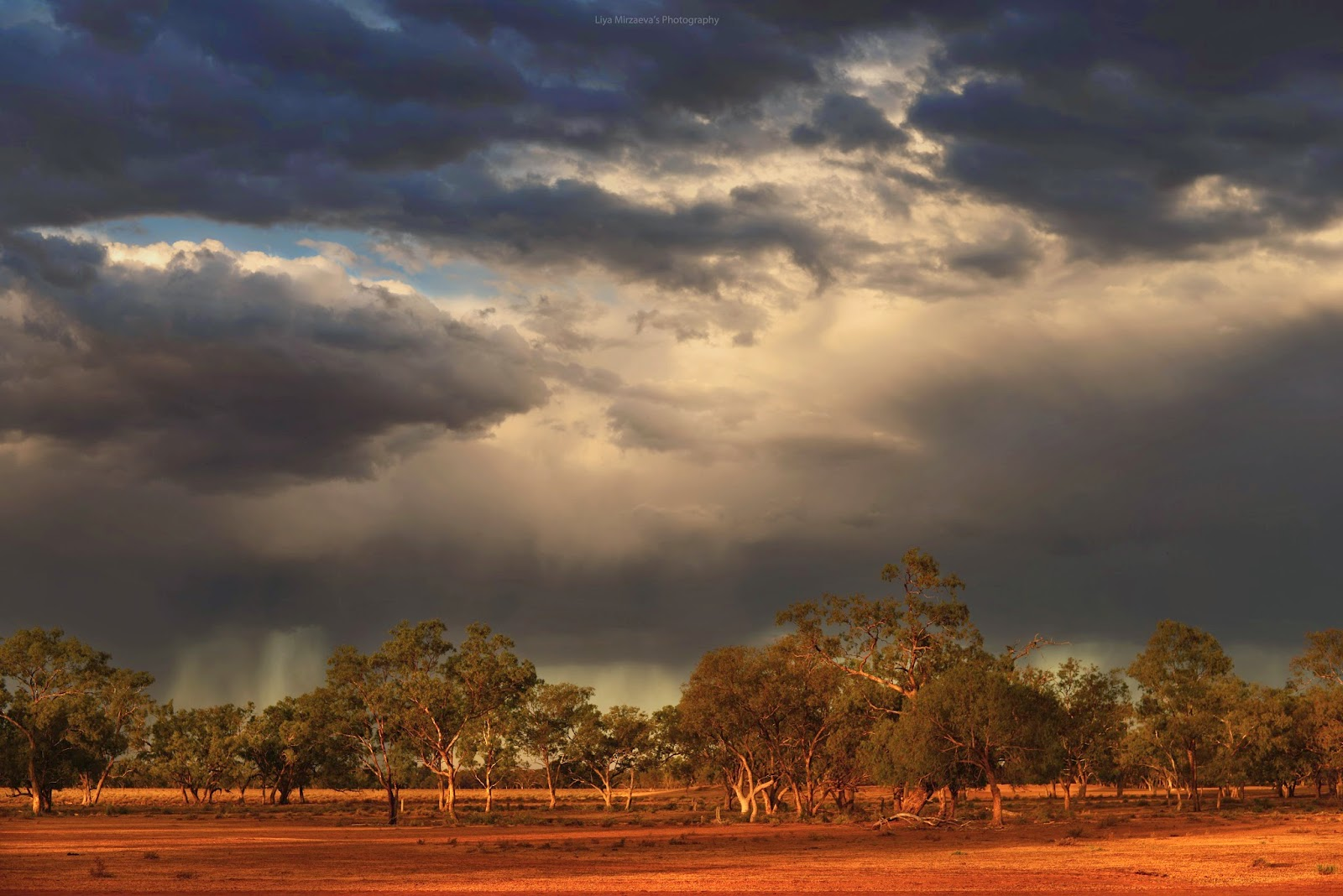 me, travel, traveler, australia, sydney, walgett, journey, amazing, wow, sun, sunset, pretty, storm, trees, nature, clouds, sun, horses, animals, farm, liya mirzaeva farmer, love