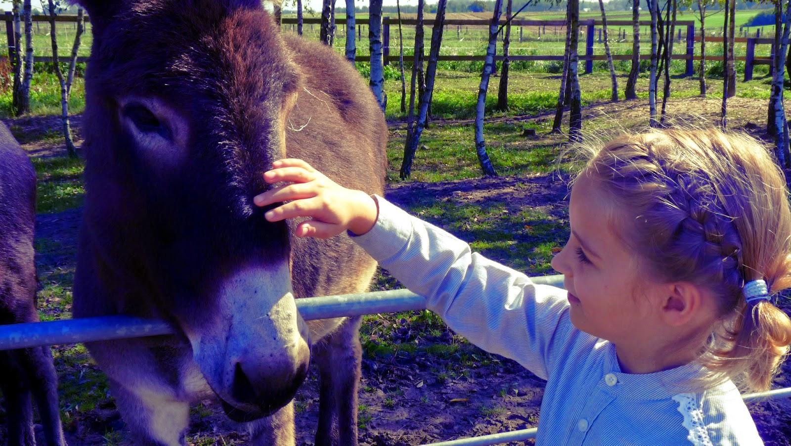 dzieci konie