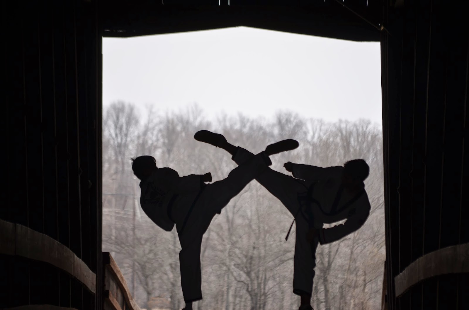 Silhouette of two black belts kicking with high kicks