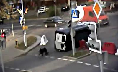 奇跡の交通事故