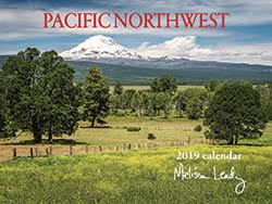 2019 Calendars are in!