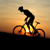 Enjoy the Thrill of Mountain Biking Safely