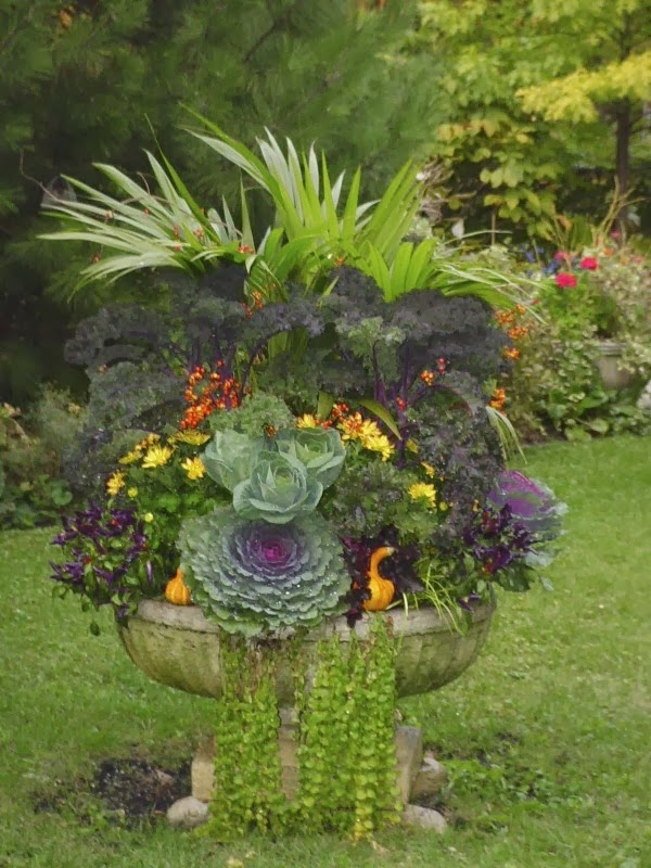 Container gardens - Water garden containers for sale ...