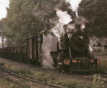 Tren Carbonero con Loc. de vapor