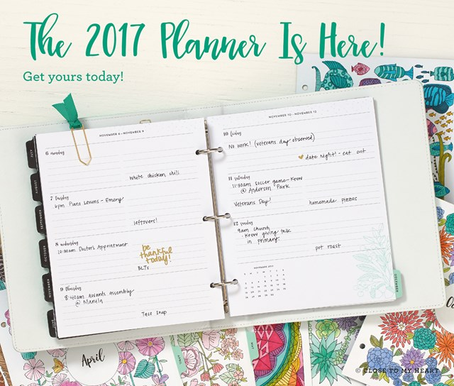 The 2017 Diary/Planner Is Here!