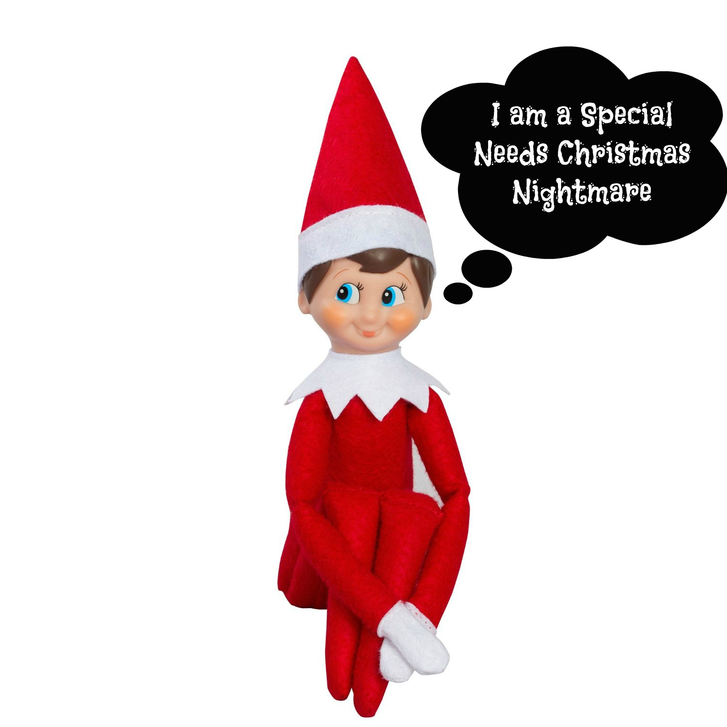 Noah's Miracle : A Special Needs Christmas Nightmare: The Elf on ...