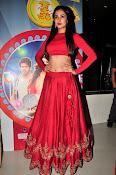 Sonal Chauhan Sizzling at Size Zero Premier-thumbnail-5