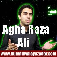 http://ishqehaider.blogspot.com/2013/11/agha-raza-ali-nohay-2014.html