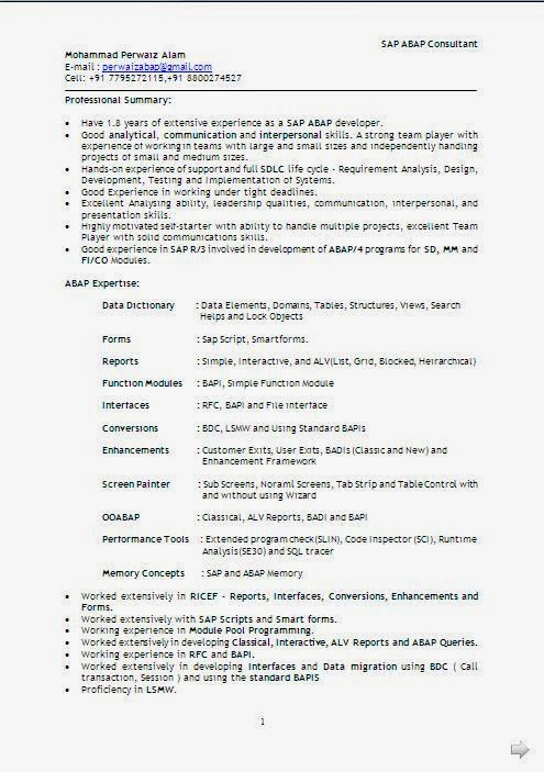 technical resume format in word technical resume format in word technical writer resume template