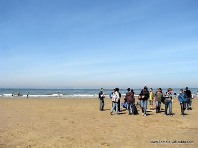 pe plaja la marea nordului
