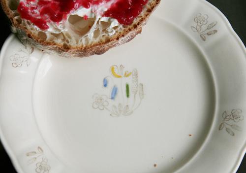raspberry and rhubarb marmalade