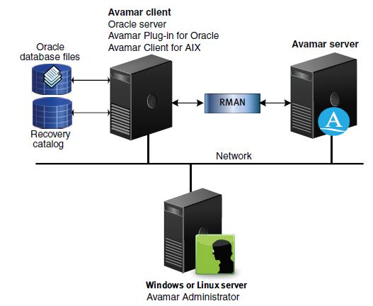 DBMentors: Backup and Restore using AVAMAR