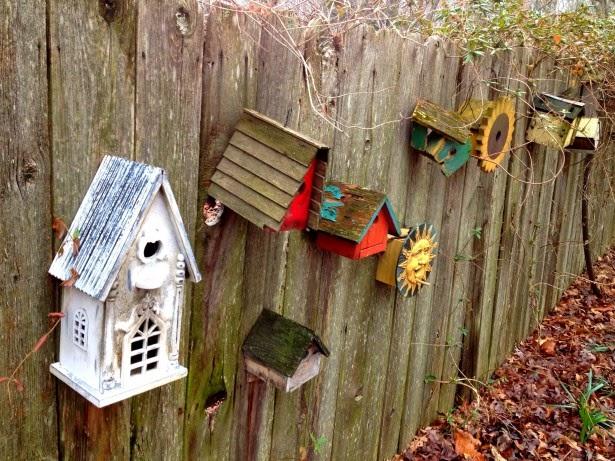 Libros de artesanía de calabaza - Fairy Gourdmother