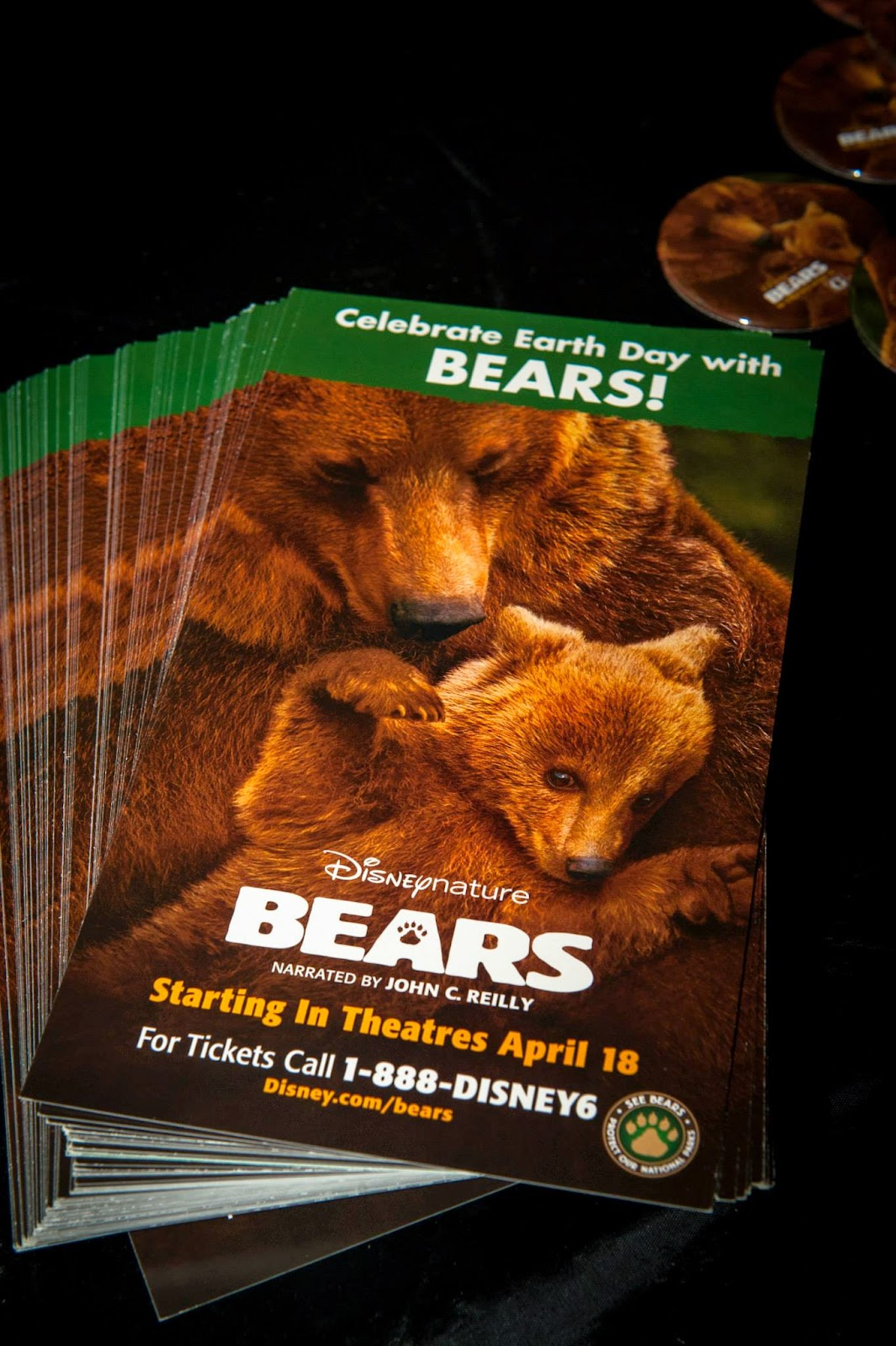 Disneynature Bears at the Disney Social Media Moms Celebration 2014