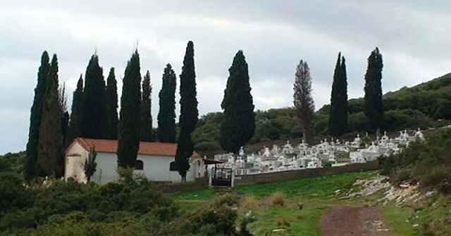 Για ποιο λόγο φυτεύουν κυπαρίσσια στα νεκροταφεία;
