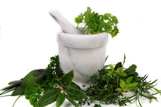 Obat herbal sipilis