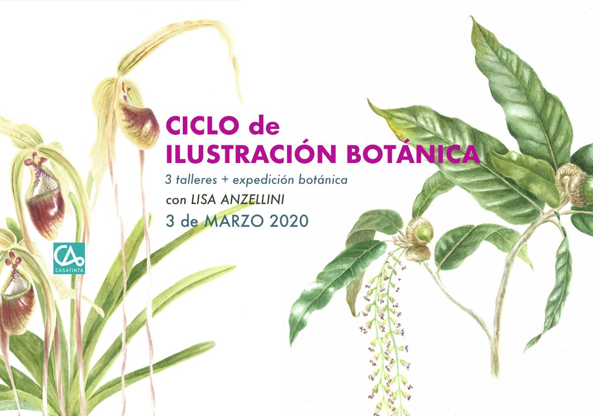 CICLO ILUSTRACIÓN BOTÁNICA // 3 de marzo