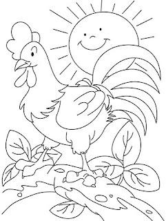 Desenhos de Galinhas para Colorir