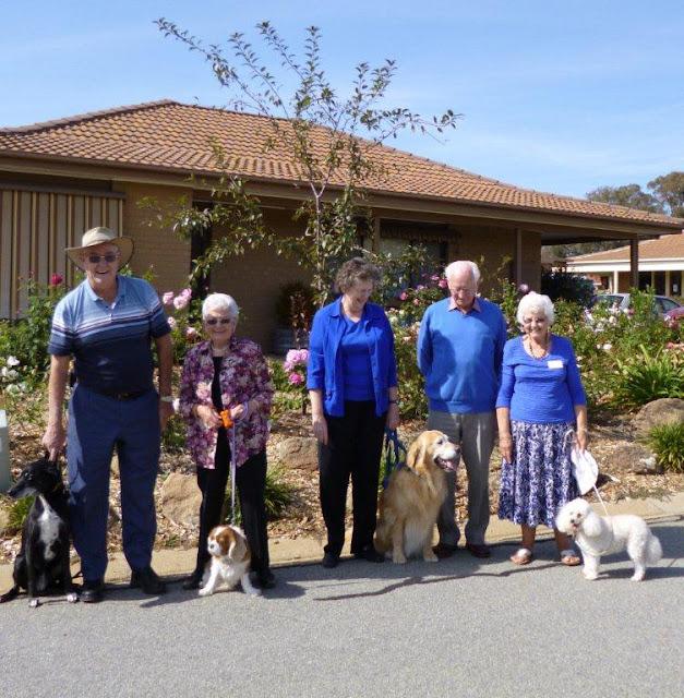pets and nursing homes