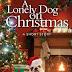Ο μοναχικός σκύλος των Χριστουγέννων...