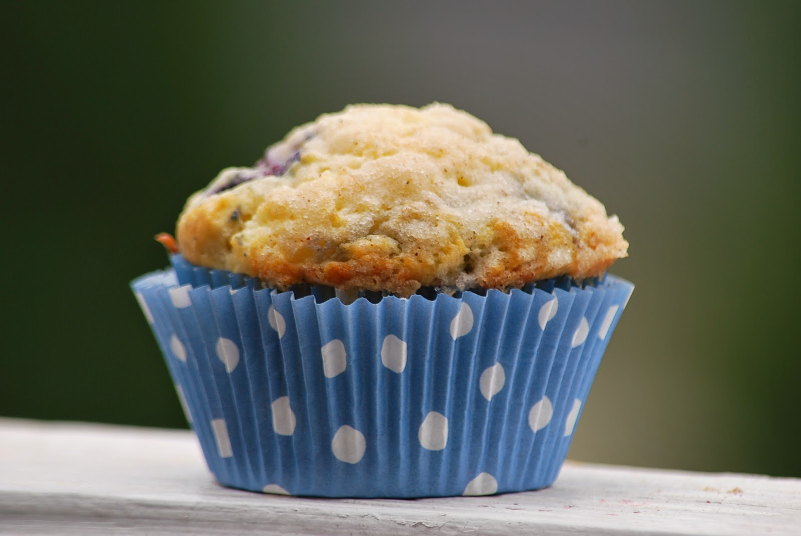 My story in recipes: Crumb Topped Blueberry Muffins