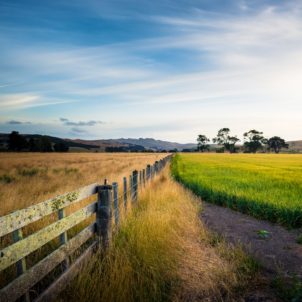 Lightroom presets tutorials and tips new zealand farm for Nz landscape