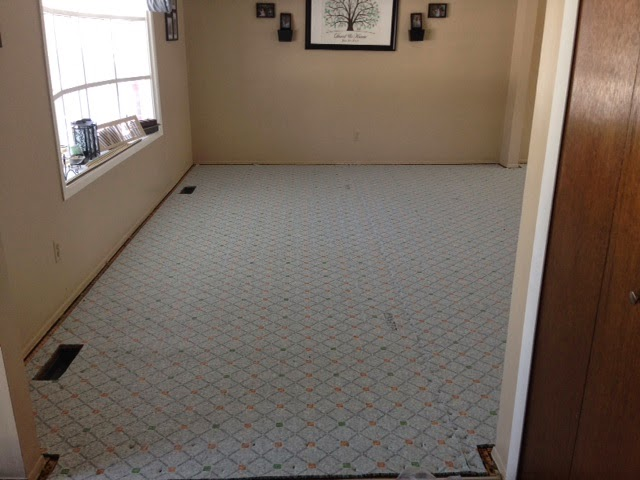 carpet pad, compare, which pad to buy
