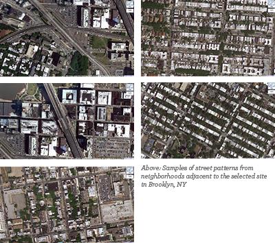 Brooklyn Navy Yard - Sample Tissues