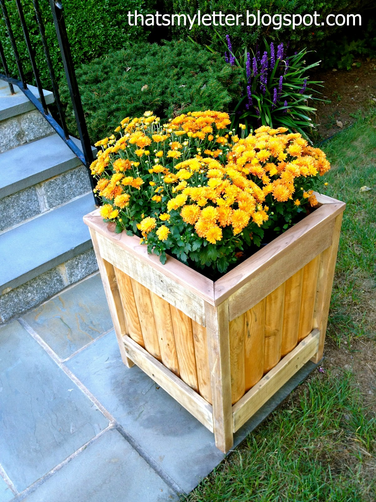 That's My Letter: DIY Outdoor Planter