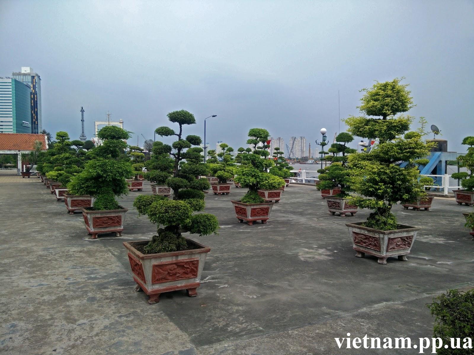 Что можно купить в Вьетнаме