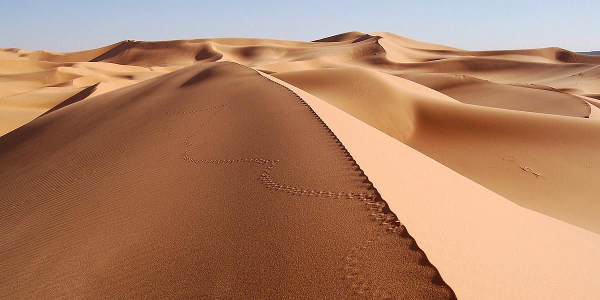 Desert 2 300+ Muhteşem HD Twitter Kapak Fotoğrafları