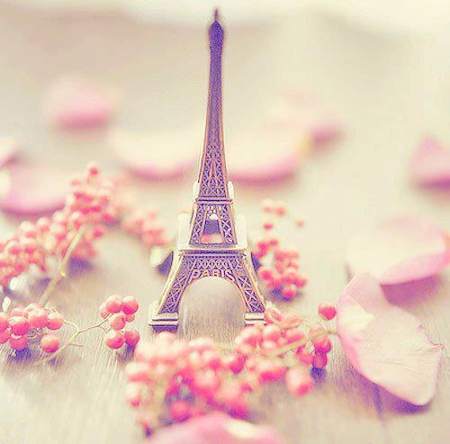 Tumblr Pink Photography Quotes