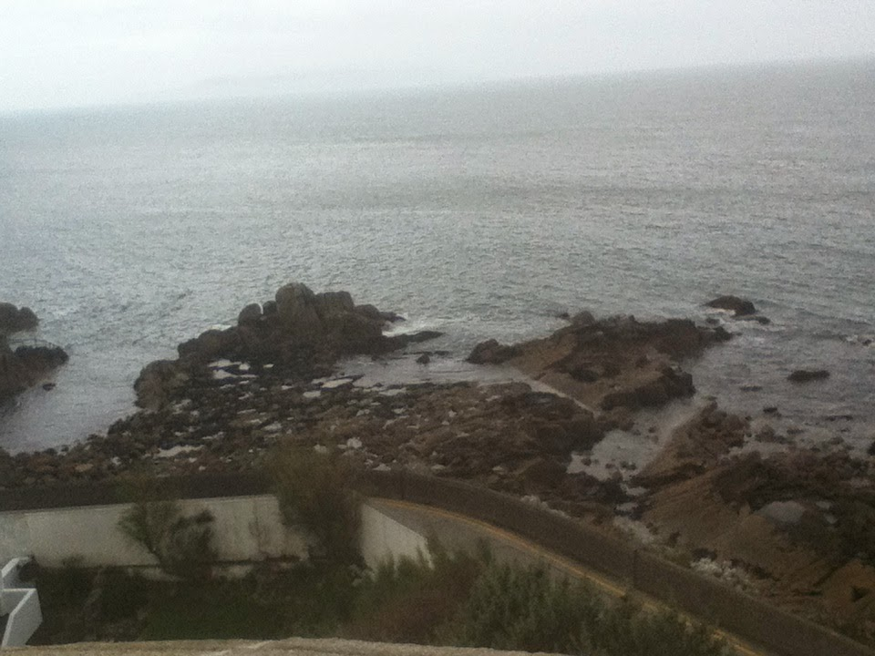 Forty Foot from Sandycove Tower