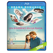 Un invierno en la playa (Stuck In Love) BRRip 720p Audio Dual Lat-Eng (2012)
