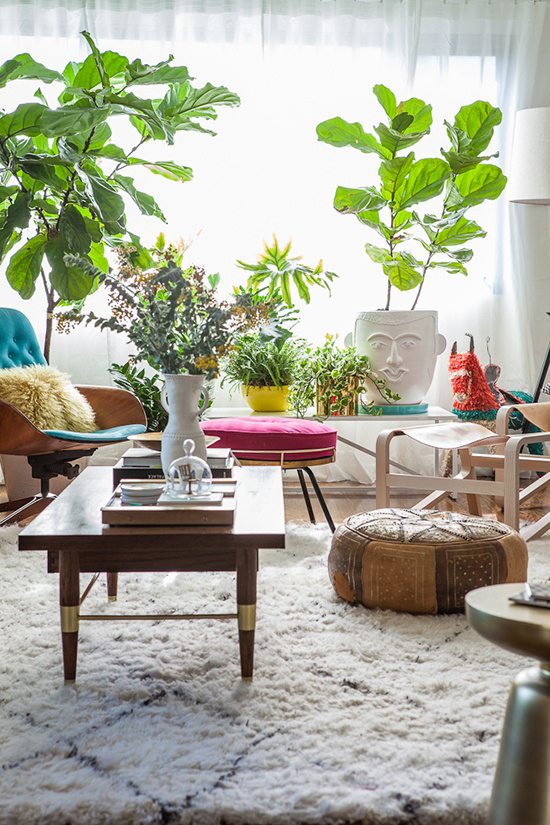 House of Bri Emery styled by Emily Henderson #plants