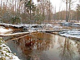 foto: Polisky nature reserve