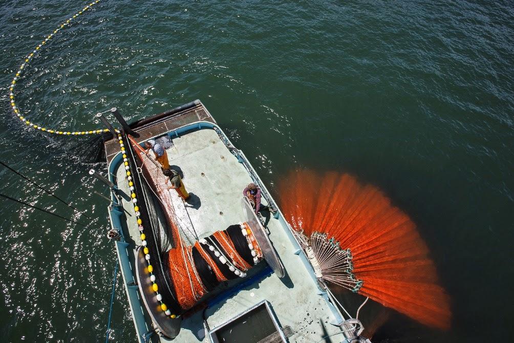 fotografia de Abner Kingman con embarcación recogiendo red de cerco