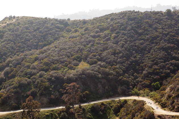 runyon canyon LA