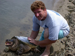 Greg Ward, King of the Turtle Savers