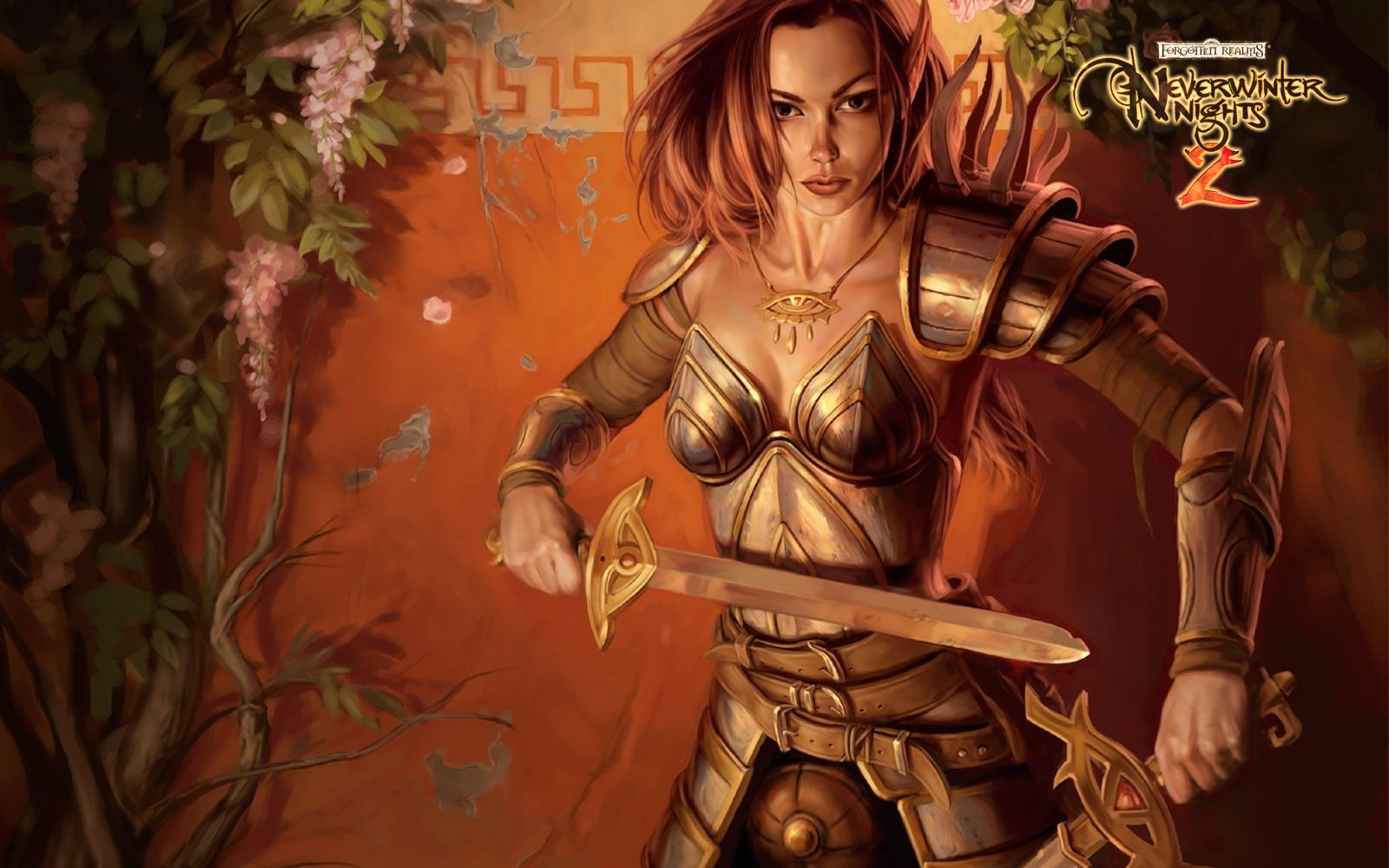 http://1.bp.blogspot.com/-WCHd4ogtbOM/ULDpw8W_a4I/AAAAAAAATPc/waNxSx8BbWs/s1600/NeverWinter_Nights_Warrior_Women_Wallpaper.jpg
