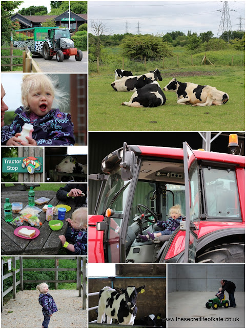 Enjoying Open Farm Sunday at Lee Valley Farm