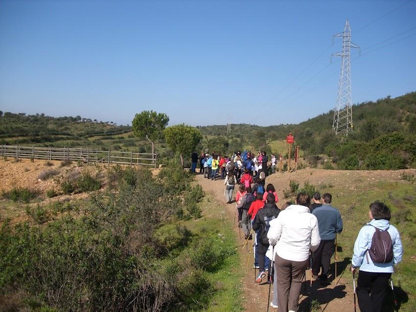 3ª RUTA NORDIC WALKING PROVINCIAL EL GRANADO - PUERTO LA LAJA