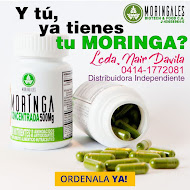 "Moringa ""El Árbol de la Vida"""