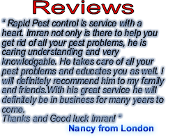 pest control london ontario review one