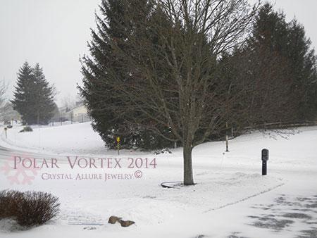 Polar Vortex of Winter 2014. Photo Credits: Crystal Allure Beaded Jewelry