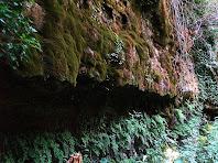 Una de les parets de la Font de la Blada