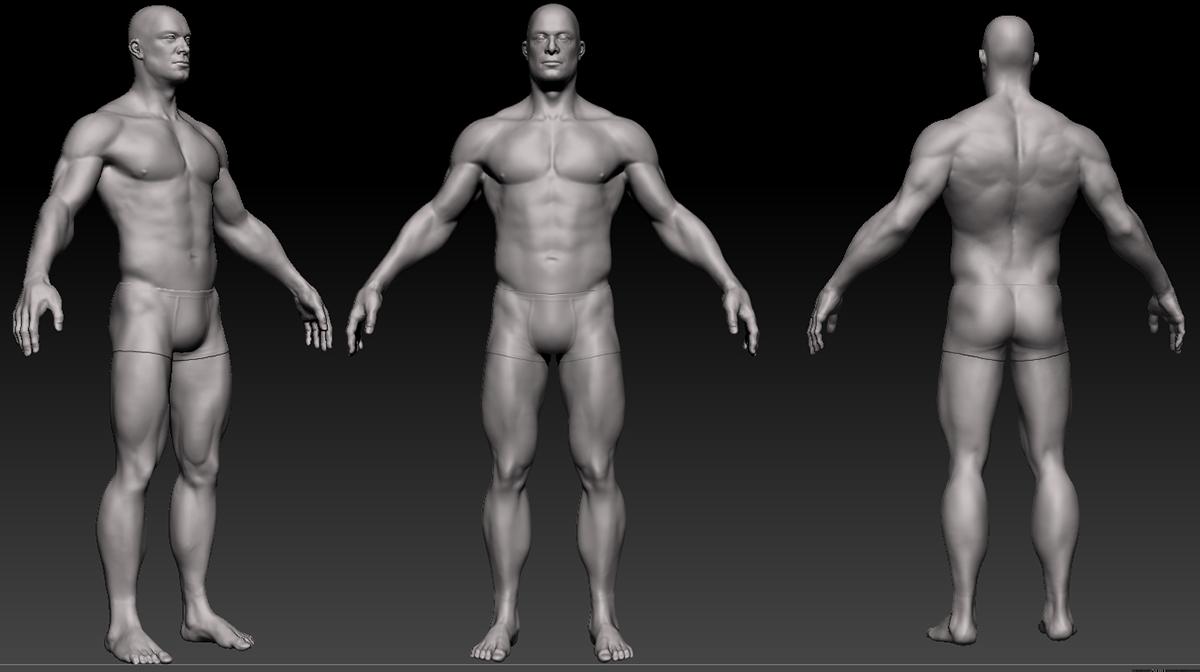 Adrián Noé: Anatomía Hombre