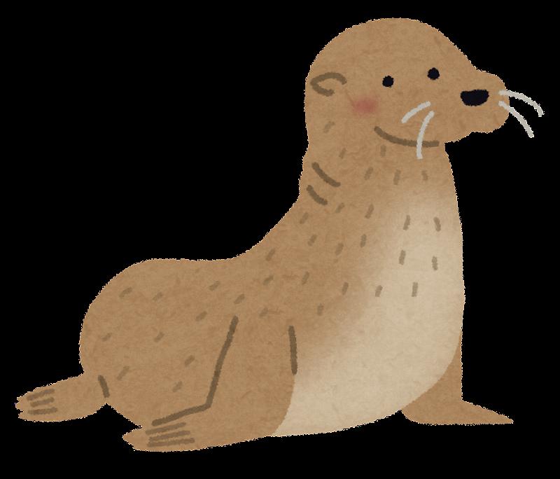 無料 お正月テンプレート無料 : アシカ科の大きな哺乳類 ...