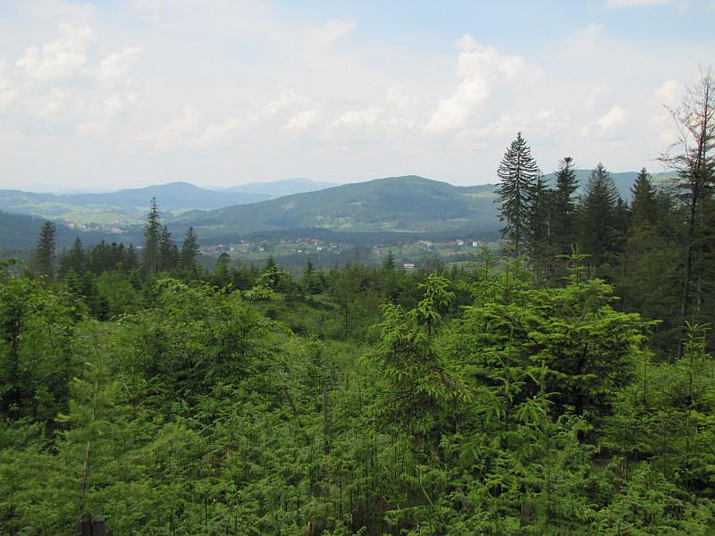 Widok z Szarculi na południowy zachód. Na pierwszym planie Młoda Góra (838 m n.p.m.)..